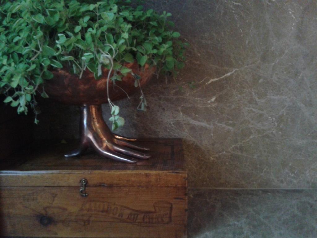 Detalhe de vaso sem cara de vaso ;)